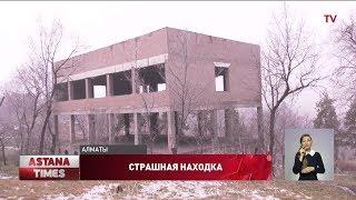 Тело младенца в Алматы обглодали грызуны