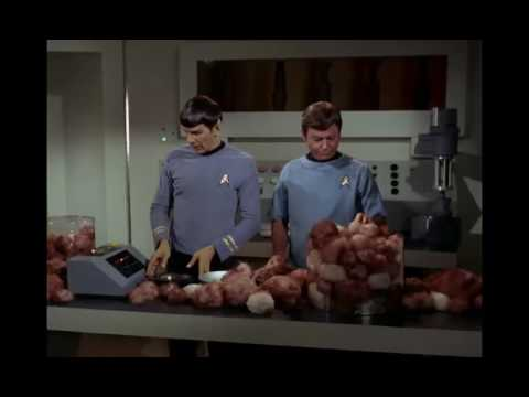 Spock's logical analysis about the benefit of owning a tribble