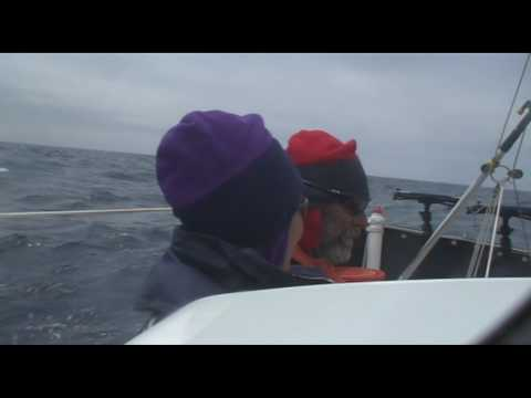 Sailing Across the Pacific Day 48 FAQ 7 What do you DO all day