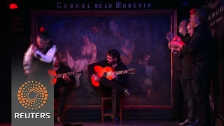 Flamenco venue celebrates its 60th anniversary - REUTERSVIDEO
