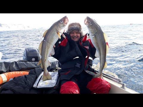 рыбалка на демиде