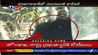 Bear Hulchul In Karimnagar - TV5NEWSCHANNEL