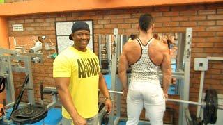 Guía para principiantes en el Gym! (espalda)