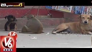 Funny conversation between monkey and dog - V6 Jajjanakare Janaare - V6NEWSTELUGU