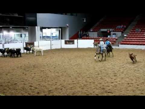 Valley View Ranch student 3/12/12 USTPA Houston youth penning - final run - 54.66 on 2