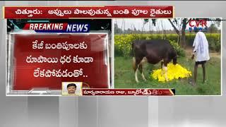 నష్టాల్లో బంతిపూల రైతులు | Huge Loss to Marigold Flower  Farmers | CVR News - CVRNEWSOFFICIAL