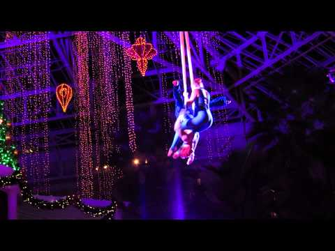 Gaylord Palms Holiday Show - Aerialists using Silk Ribbons