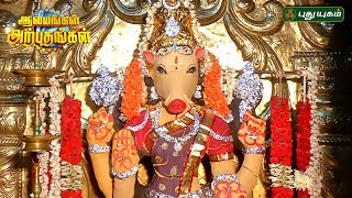 Aalayangal Arputhangal 10-07-2017 PuthuYugam TV Show