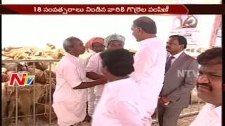 Minister Harish Rao Reviews Arrangements of Sheep Distribution Scheme || NTV - NTVTELUGUHD