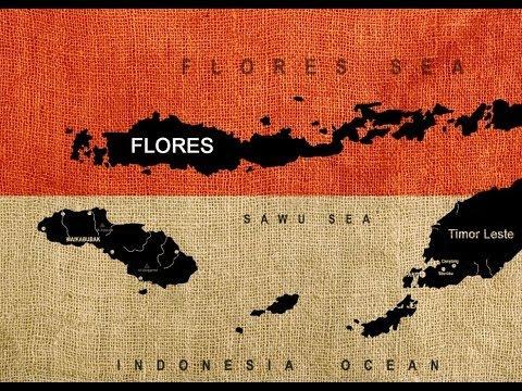 Organic Flores Bajawa