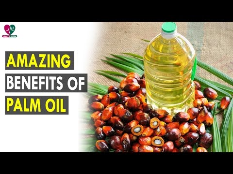 Amazing Benefits Of Palm Oil || Health Sutra - Best Health Tips