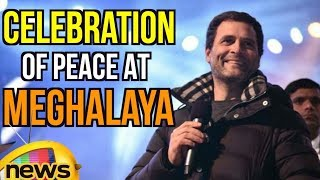 Congress President Rahul Gandhi Taking Part in Celebration of Peace At Meghalaya | Mango News - MANGONEWS