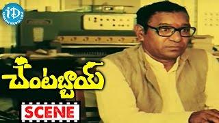 Chantabbai Movie Scenes - Sri Lakshmi's Funny Poetry || Chiranjeevi || Suhasini || Jandhyala - IDREAMMOVIES