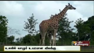 Fascinating Facts 22-07-2014 Puthiya Thalaimurai Tv Show