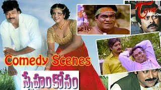 Sneham Kosam  Movie Comedy Scenes || Back to Back || Chiranjeevi || Meena - TELUGUONE
