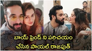 Heroine Payal Rajput Introduced Her Boy Friend on Social Media | Tollywood Updates - RAJSHRITELUGU