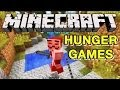Minecraft HUNGER GAMES: 3 IN 1! (Youtube Talk)