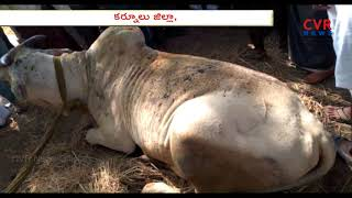Fire Mishap in Kurnool District | Panyam Constituency | CVR NEWS - CVRNEWSOFFICIAL