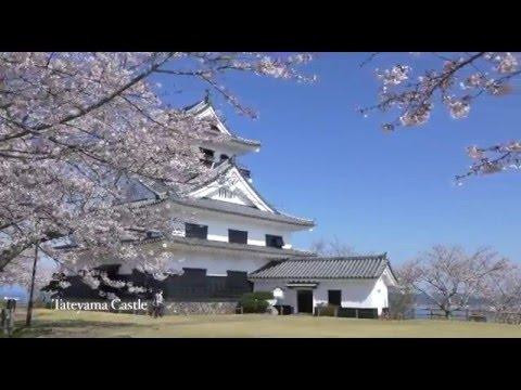 千葉県イメージアップ動画(30秒バージョン)