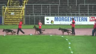 2012 SV BSZS Ulm NKGR-008 Enosch v. Amasis