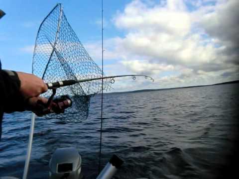 рыбалка во  июле получи и распишись пяозере