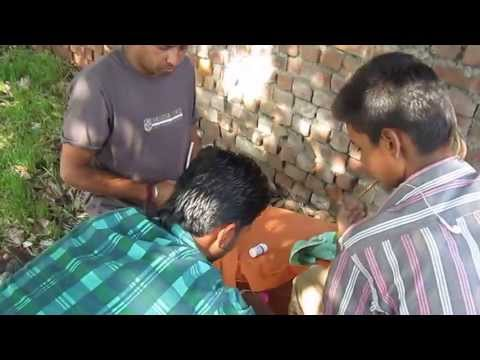 PENDU KABOOTAR UDAN MUKABLA BY SARWAN SINGH AT VADIANA VILLAGE (PART-1)