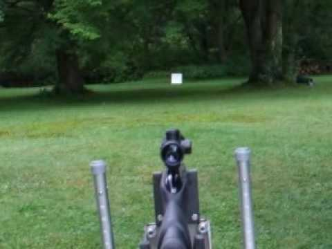 Gamo Whisper being fired at a squirrel drop target