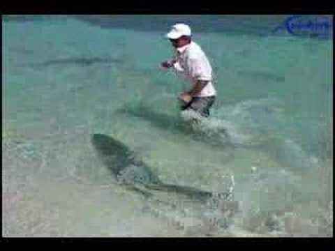 Fishing Big Monster Tarpon sabalo in the Caribbean Sea Cuba Destinations