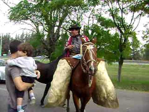 Gauchos General Rodriguez Cordoba tradicion videos fotos caballos