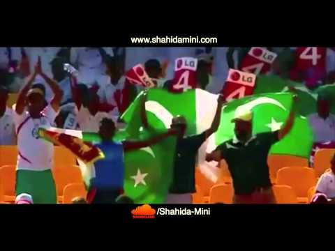 Chakkay Pe Chaka Cricket Song-Shahida Mini by SOLANGI AFTAB
