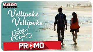 Vellipoke Vellipoke Song Promo | Nee Kosam Songs | AvinashKokati | SrinivasaSharma - ADITYAMUSIC