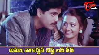 Amala And Nagarjuna Best Love Scene | Ultimate Movie Scenes | TeluguOne - TELUGUONE