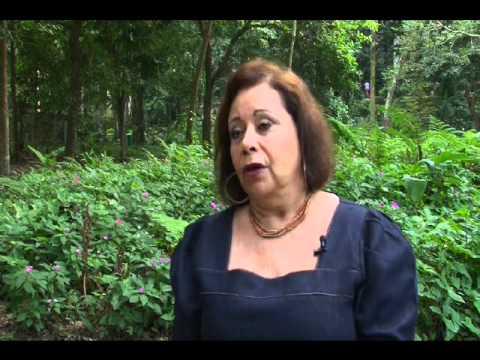 Reflorestamento da Floresta da Tijuca - Expedições (29/11/2011)
