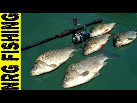 летняя рыбалка на карася