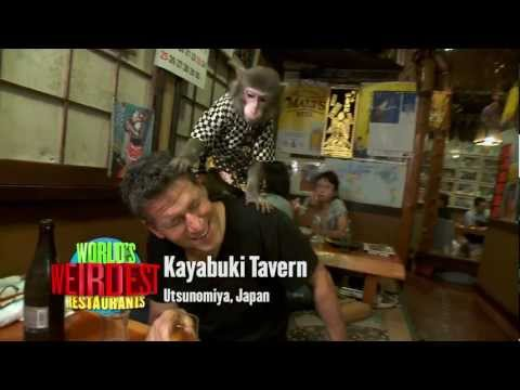 World's Weirdest Restaurants - Series Trailer