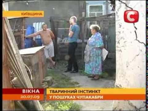 Chupakabra. Ukraina TV STB news. 2009