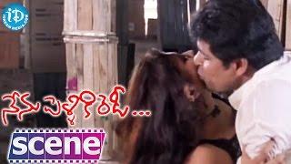 Nenu Pelliki Ready Movie Scenes - Ali And Sunil Comedy || Srikanth || MS Narayana - IDREAMMOVIES