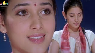Happy Days Movie Scenes | Tamanna and Varun Sandesh Intro | Telugu Movie Scenes | Sri Balaji Video - SRIBALAJIMOVIES
