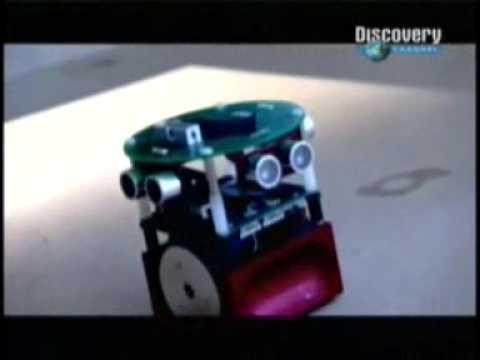 Un robot con tejido cerebral y neuronas de rata