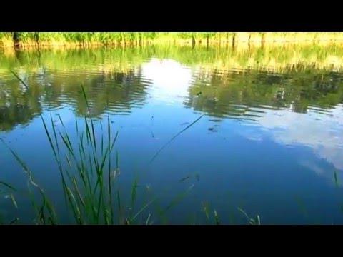 рыбалка в январе на амуре