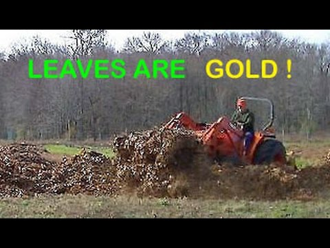 Building Healthy Organic Garden Soil 101 & Farming: Receiving My Fall Leaves composting Material