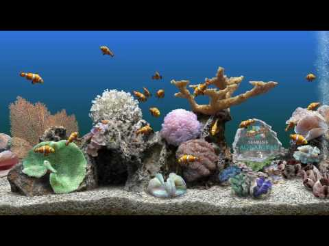 Aquarium screen savers best.avi
