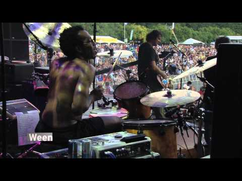 LOLLAPALOOZA - YouTube