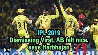 IPL 2019  Dismissing Virat, AB felt nice, says Harbhajan - IANSINDIA