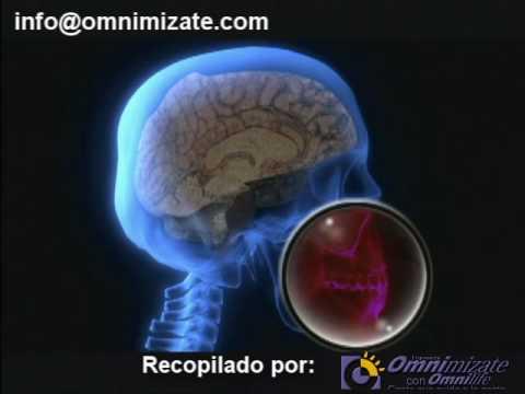 Viaje al Cuerpo humano 1er video Recopilado por Onimizate.com Omnilife