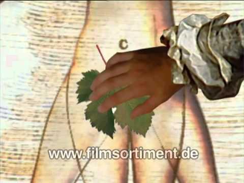 Aufklärungsfilm / Sexualkunde: KLITORIS - DIE SCHÖNE UNBEKANNTE (DVD / Vorschau)
