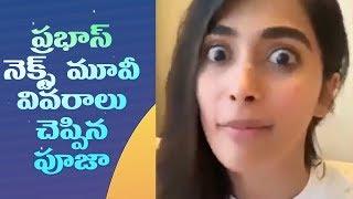ప్రభాస్ నెక్స్ట్ మూవీ వివరాలు చెప్పిన పూజ | Prabhas Next Movie - IGTELUGU