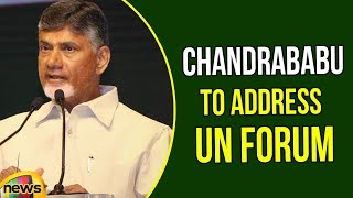 AP CM N Chandrababu Naidu to Address UN Forum | Chandrababu Latest News | Mango News - MANGONEWS