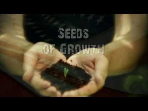Hemp Out MOVEMENT (Official Video) Artist Andrew Reid