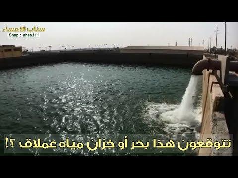 تتوقعون هذا بحر او خزان عملاق !! | سناب الاحساء - صوت وصوره